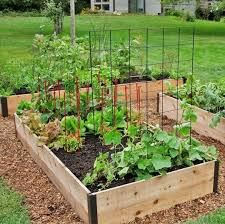 a backyard garden is a fun & sustainable family project!